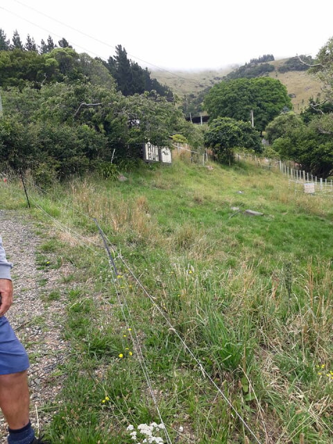 Start of the hill cut for a permaculture herb garden in banks peninsula